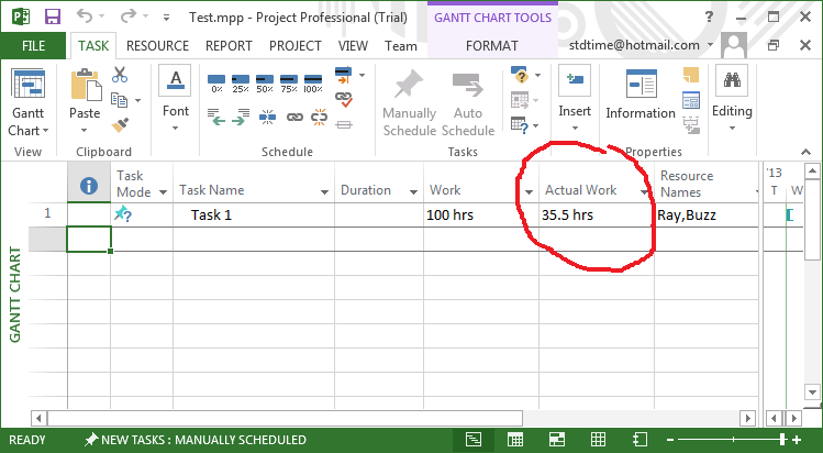 Gantt View with Actual Work
